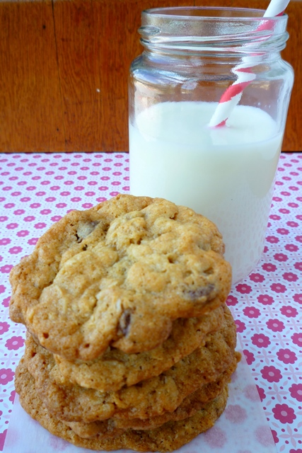 Coconut Oatmeal Chocolate Chip Cookies5